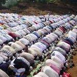 Omar-Hussein-blog